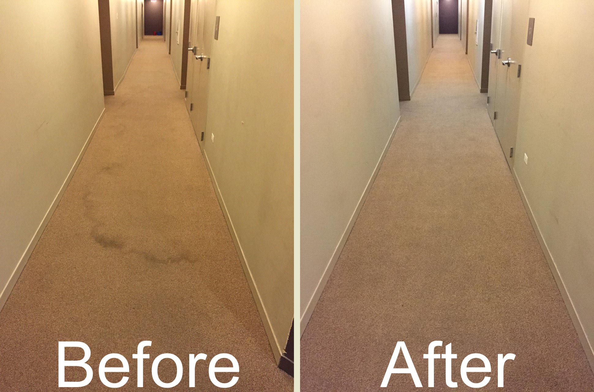 Carpet Cleaning Alsip Il 29 95 Any Size Room